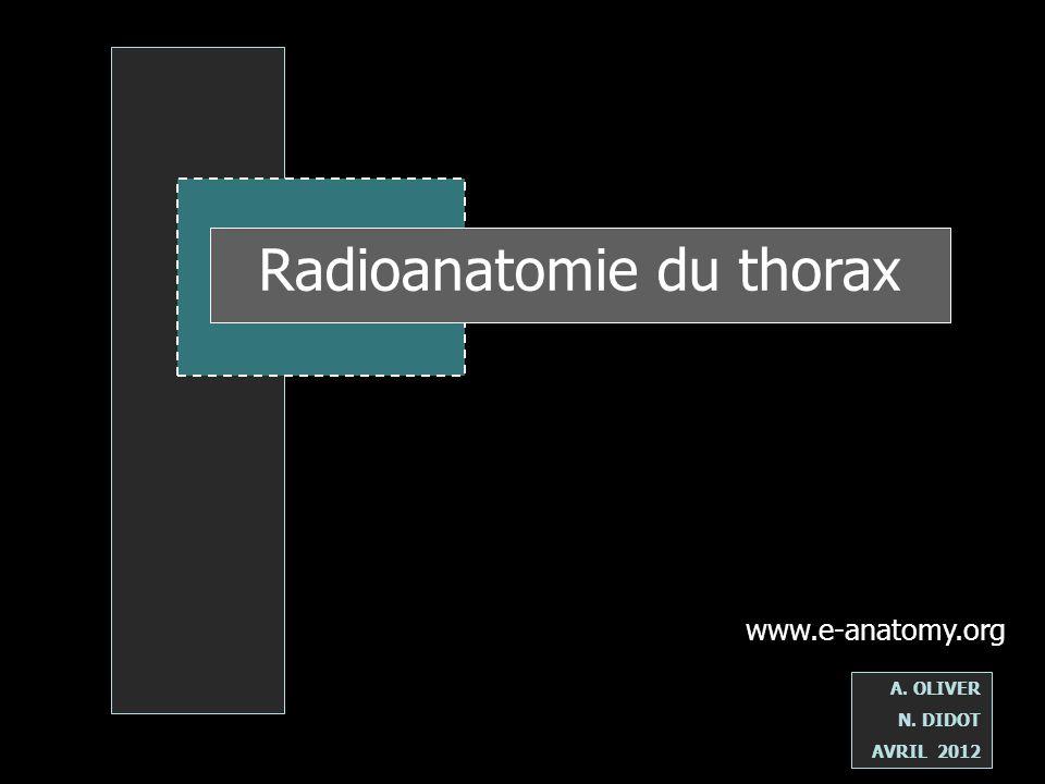 www.e-anatomy.org A. OLIVER N. DIDOT AVRIL 2012 Radioanatomie du thorax