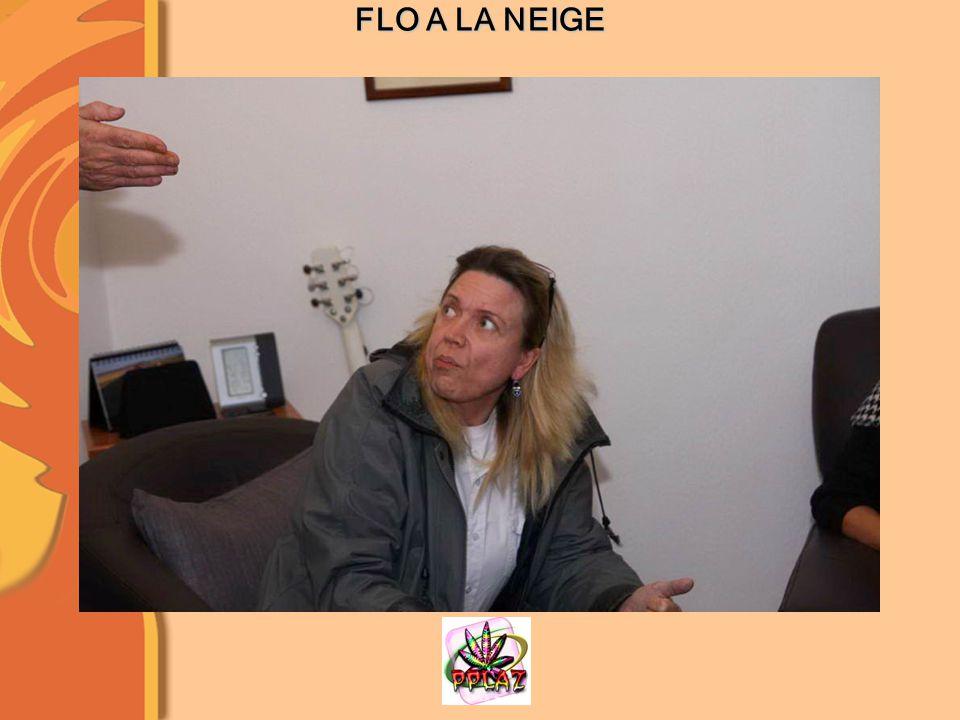 FLO A LA NEIGE