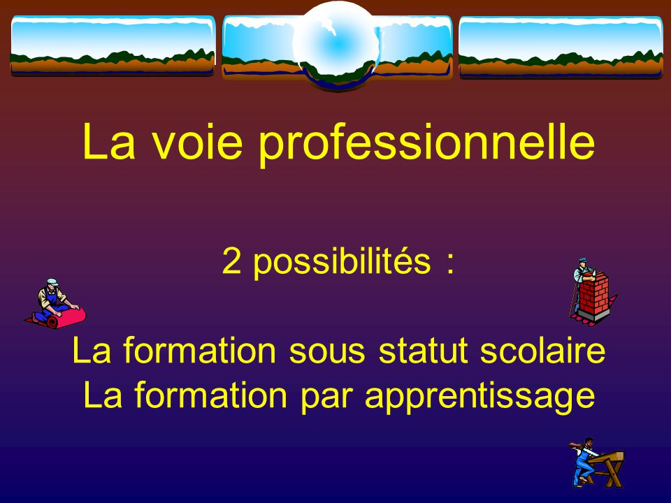 La voie professionnelle 2 possibilités : La formation sous statut scolaire La formation par apprentissage