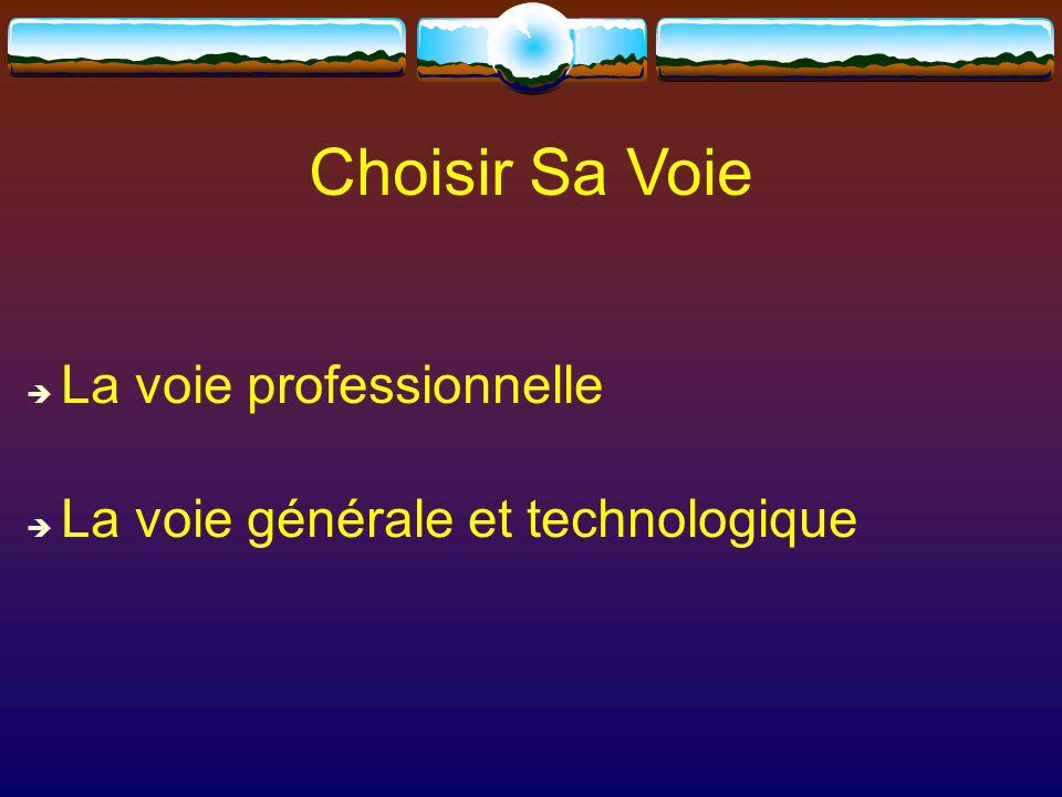 Choisir Sa Voie  La voie professionnelle  La voie générale et technologique