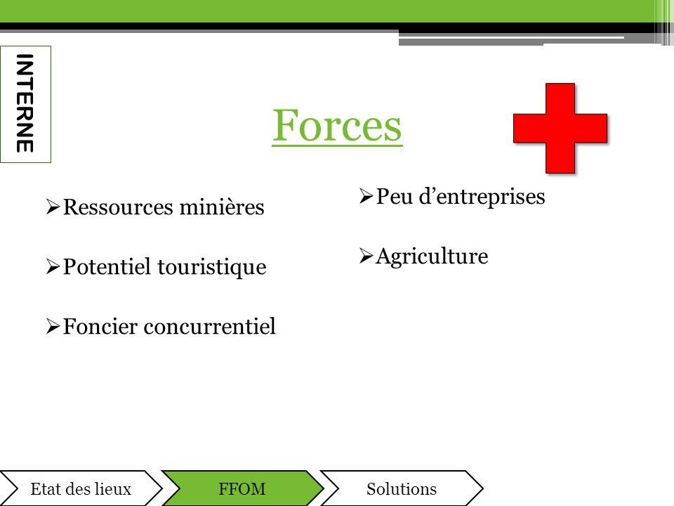 Forces  Ressources minières  Potentiel touristique  Foncier concurrentiel  Peu d'entreprises  Agriculture INTERNE Etat des lieuxFFOMSolutions