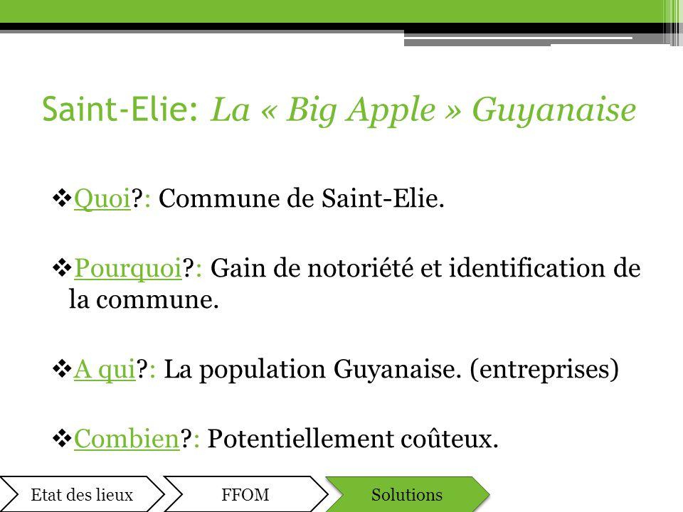 Saint-Elie: La « Big Apple » Guyanaise  Quoi?: Commune de Saint-Elie.  Pourquoi?: Gain de notoriété et identification de la commune.  A qui?: La po
