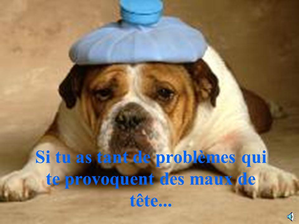 Si tu as tant de problèmes qui te provoquent des maux de tête...