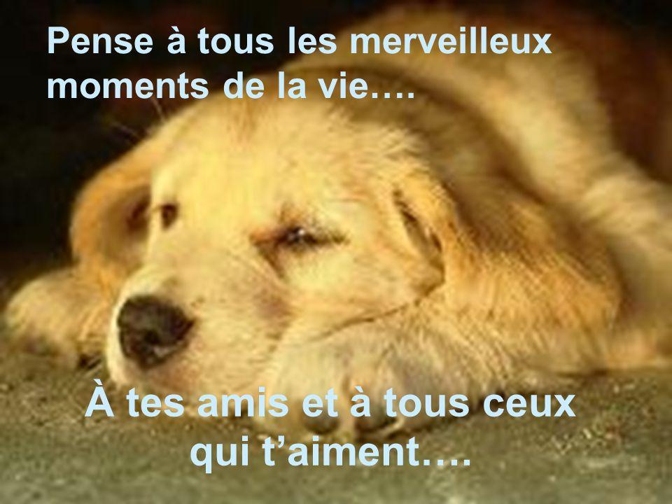 À tes amis et à tous ceux qui t'aiment…. Pense à tous les merveilleux moments de la vie….