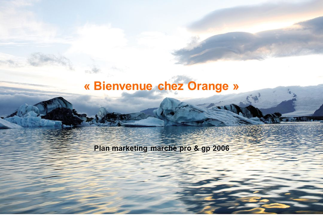 OrangeFrance - Confidentiel - 1 « Bienvenue chez Orange » Plan marketing marché pro & gp 2006