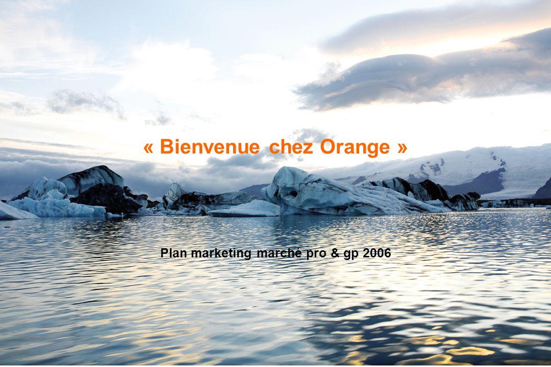 OrangeFrance - Confidentiel - 1 « Bienvenue chez Orange » Plan marketing marché pro & gp 2006
