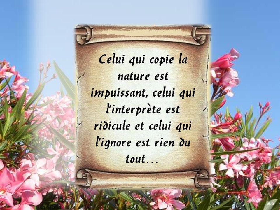 La nature peut aussi bien générer beauté que laideur…