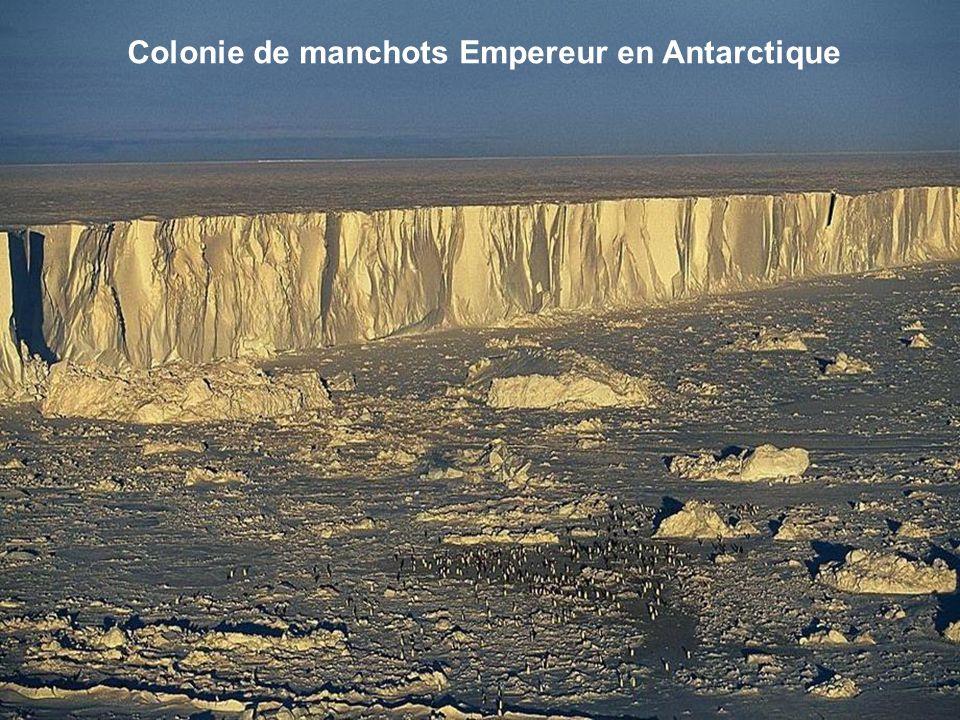 Dunes, Chili