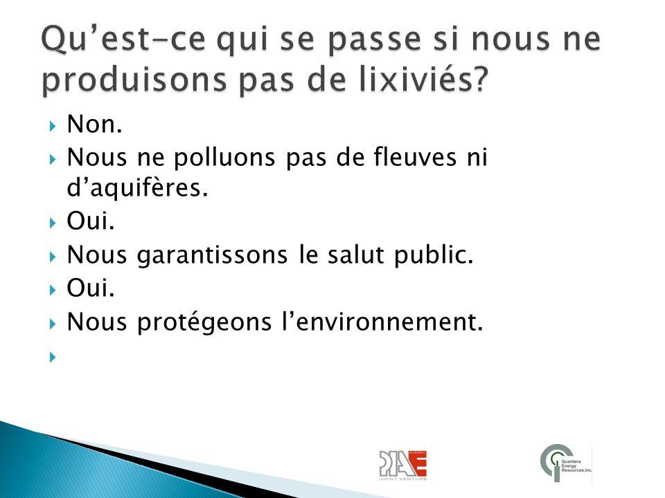  Non.  Nous ne polluons pas de fleuves ni d'aquifères.  Oui.  Nous garantissons le salut public.  Oui.  Nous protégeons l'environnement. 