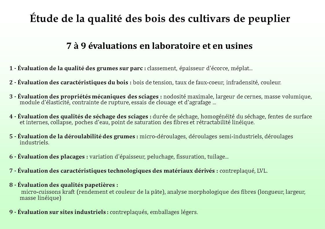 Étude de la qualité des bois des cultivars de peuplier 7 à 9 évaluations en laboratoire et en usines 1 - Évaluation de la qualité des grumes sur parc