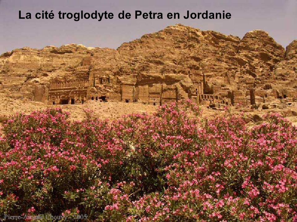 La cité troglodyte de Petra en Jordanie À environ 200 kilomètres au sud d'Amman, la capitale de la Jordanie, se dresse la «cité rose» de Petra, patrim