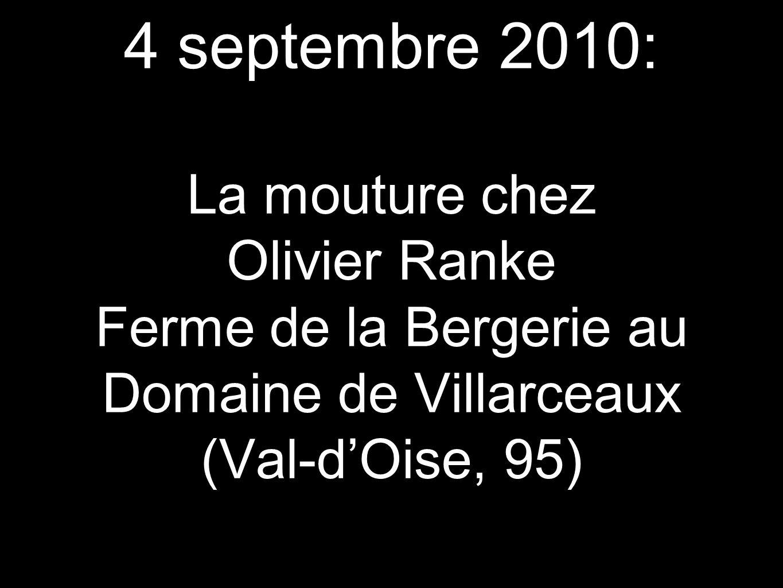 4 septembre 2010: La mouture chez Olivier Ranke Ferme de la Bergerie au Domaine de Villarceaux (Val-d'Oise, 95)