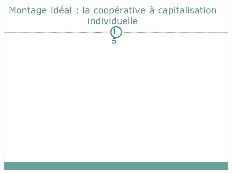 Montage idéal : la coopérative à capitalisation individuelle 15