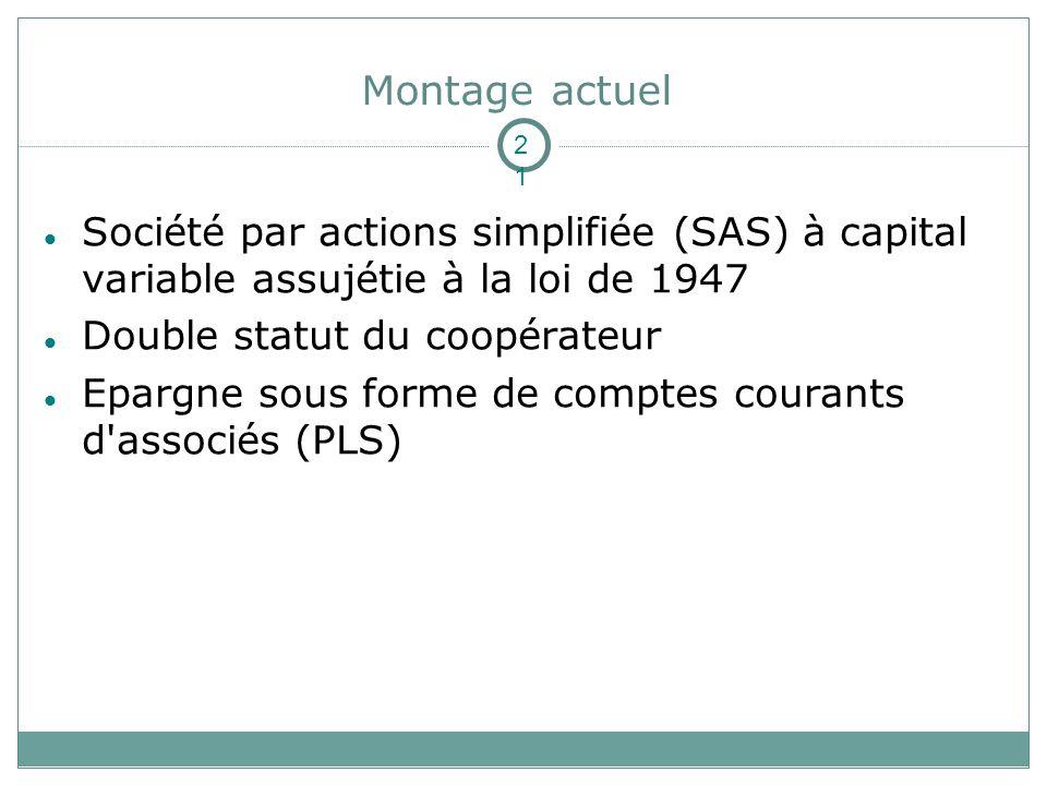 Montage actuel Société par actions simplifiée (SAS) à capital variable assujétie à la loi de 1947 Double statut du coopérateur Epargne sous forme de comptes courants d associés (PLS) 21