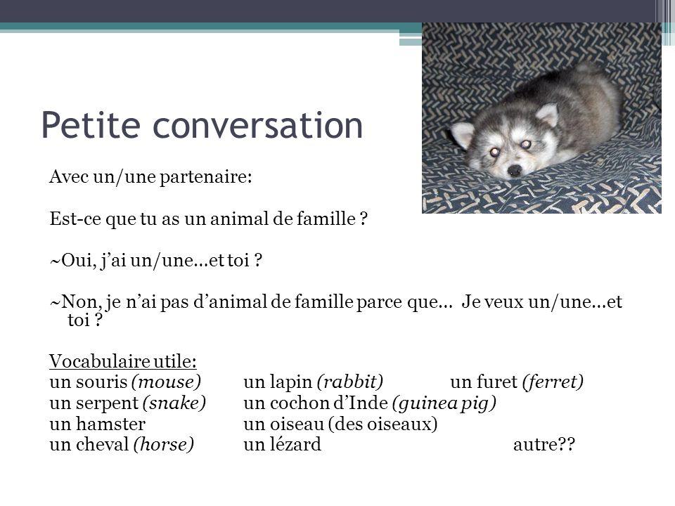Petite conversation Avec un/une partenaire: Est-ce que tu as un animal de famille ? ~Oui, j'ai un/une…et toi ? ~Non, je n'ai pas d'animal de famille p