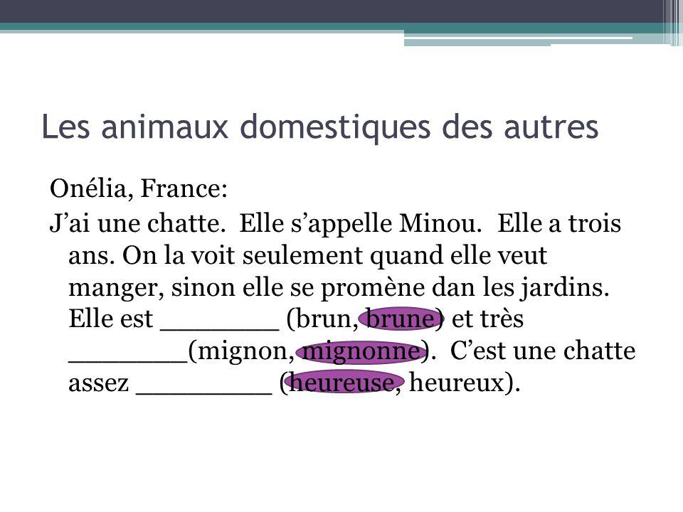 Les animaux domestiques des autres Onélia, France: J'ai une chatte. Elle s'appelle Minou. Elle a trois ans. On la voit seulement quand elle veut mange
