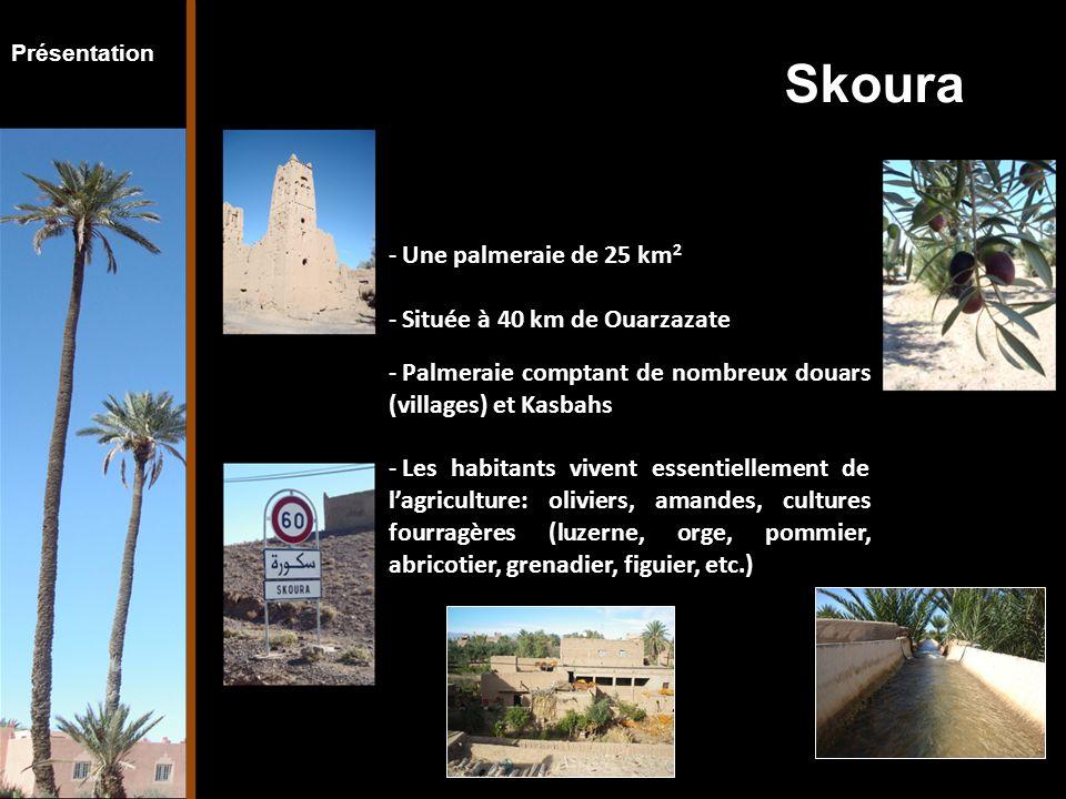 Présentation - Une palmeraie de 25 km 2 - Située à 40 km de Ouarzazate - Palmeraie comptant de nombreux douars (villages) et Kasbahs - Les habitants vivent essentiellement de l'agriculture: oliviers, amandes, cultures fourragères (luzerne, orge, pommier, abricotier, grenadier, figuier, etc.) Skoura