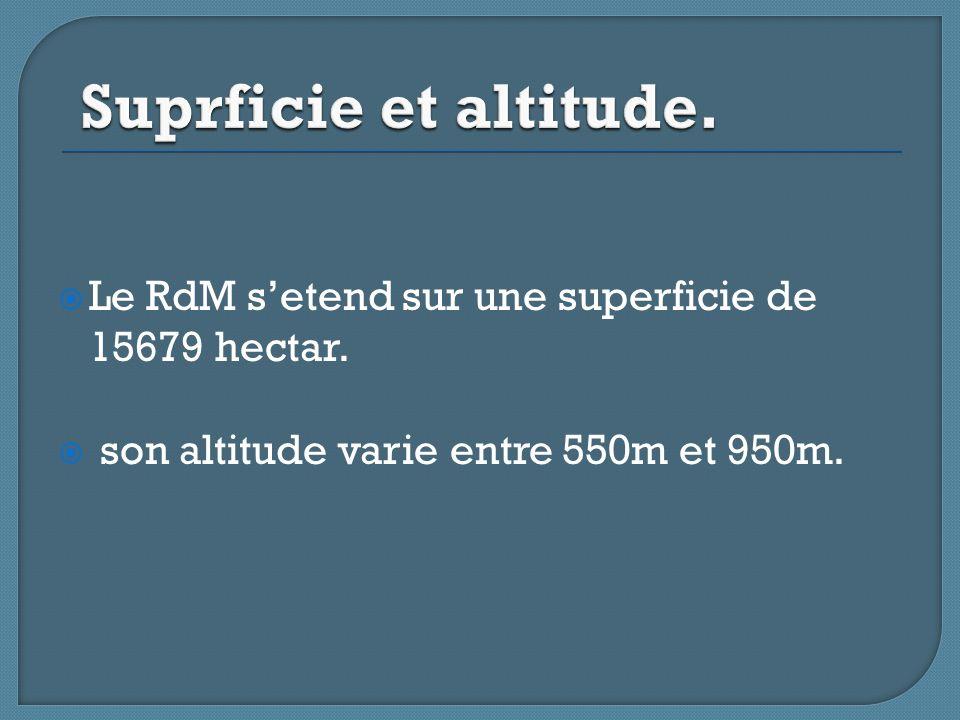  Le RdM s'etend sur une superficie de 15679 hectar.  son altitude varie entre 550m et 950m.