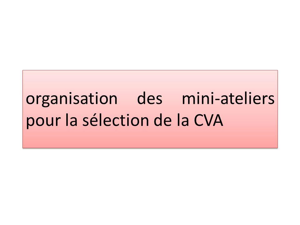 organisation des mini-ateliers pour la sélection de la CVA