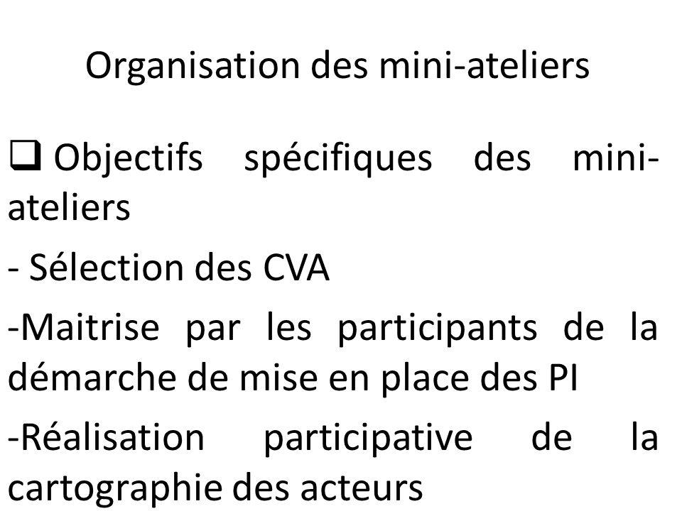Organisation des mini-ateliers (suite)  Inputs pour l'organisation des mini- ateliers - Rapport de la présélection des 3CVA - Rapport de l'enquête complémentaire sur les données secondaires relatives aux CVA