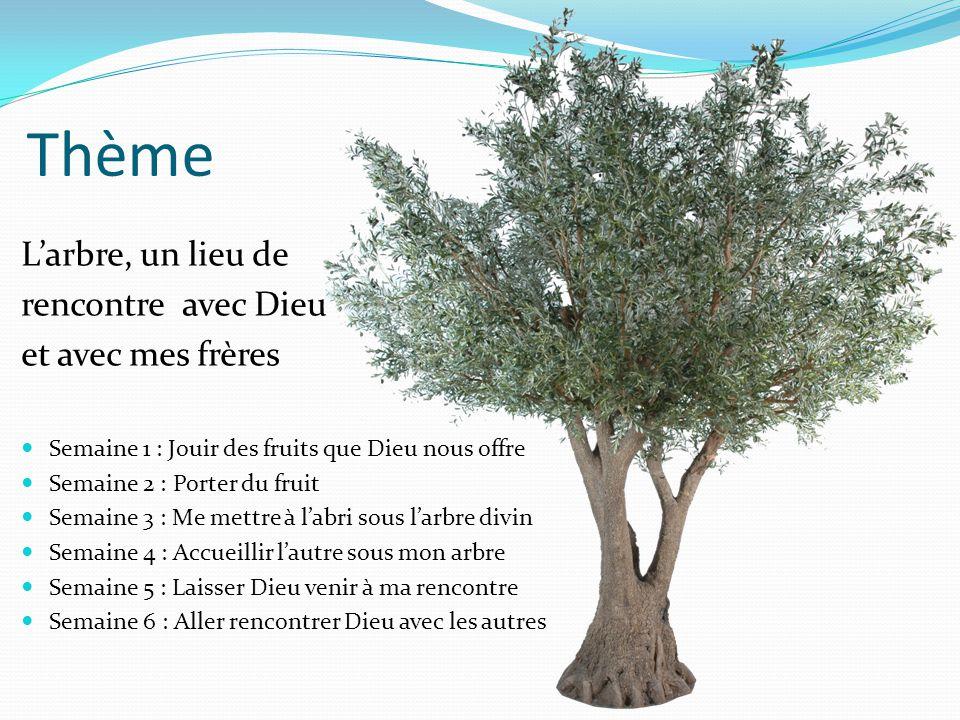 Thème L'arbre, un lieu de rencontre avec Dieu et avec mes frères Semaine 1 : Jouir des fruits que Dieu nous offre Semaine 2 : Porter du fruit Semaine