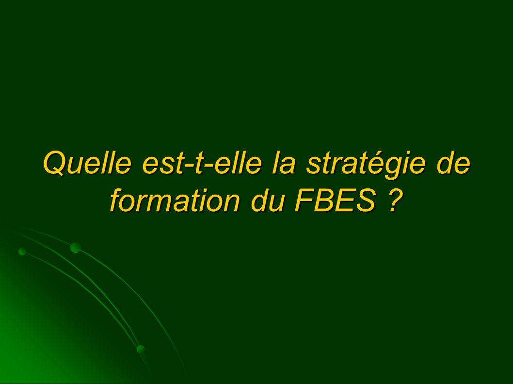 Quelle est-t-elle la stratégie de formation du FBES ?