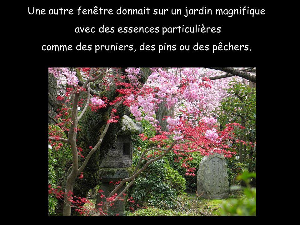 Une autre fenêtre donnait sur un jardin magnifique avec des essences particulières comme des pruniers, des pins ou des pêchers.