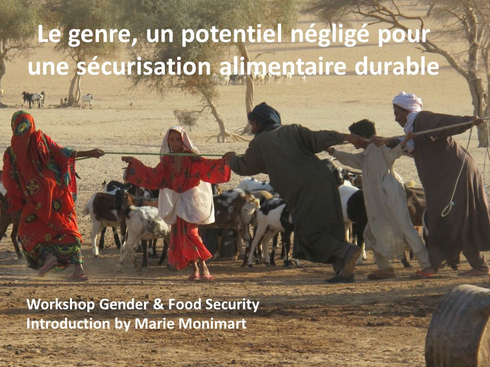 Workshop Gender & Food Security Introduction by Marie Monimart Le genre, un potentiel négligé pour une sécurisation alimentaire durable