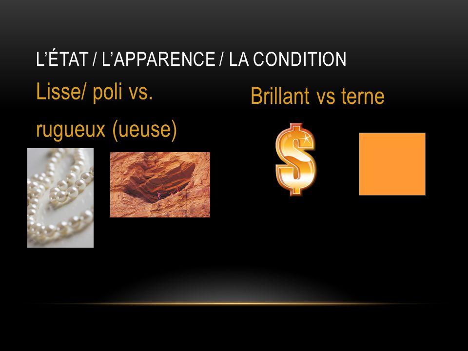 L'ÉTAT / L'APPARENCE / LA CONDITION Lisse/ poli vs. rugueux (ueuse) Brillant vs terne