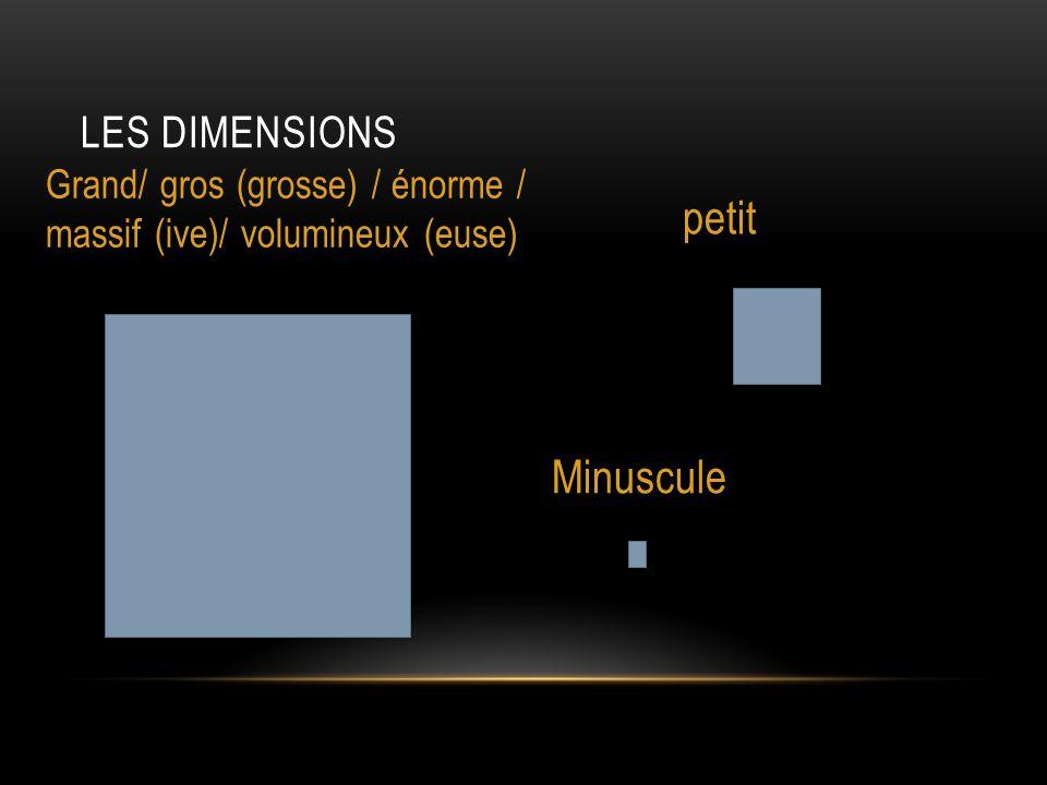 LES DIMENSIONS Grand/ gros (grosse) / énorme / massif (ive)/ volumineux (euse) petit Minuscule