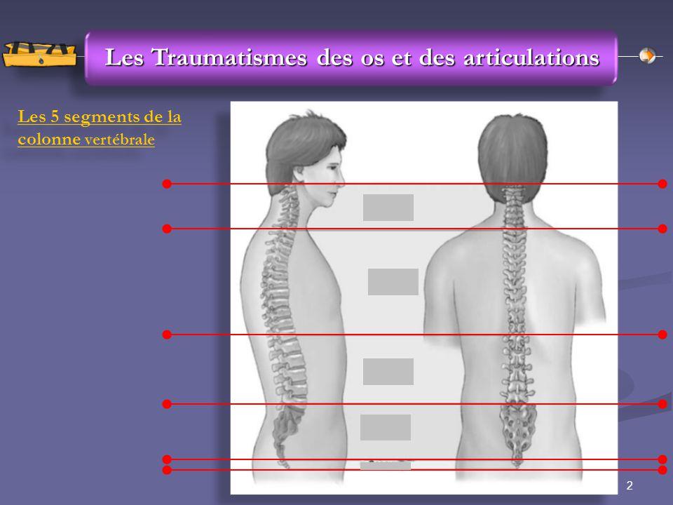 2Groupe des Instructeurs SDIS 89 Les Traumatismes des os et des articulations Les 5 segments de la colonne vertébrale