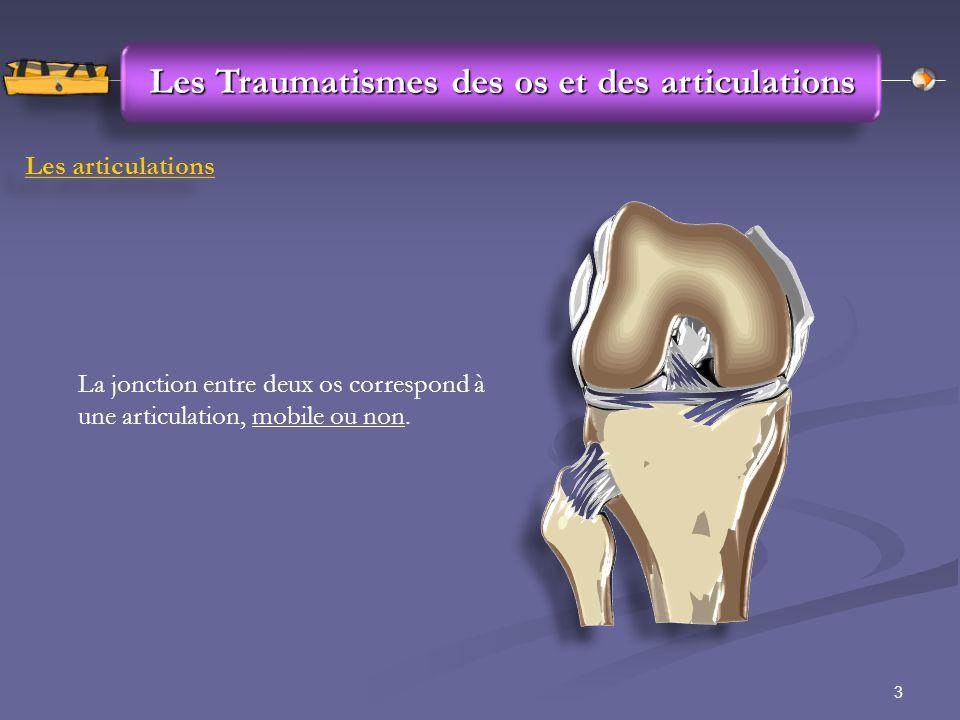 3 Les Traumatismes des os et des articulations Les articulations La jonction entre deux os correspond à une articulation, mobile ou non.