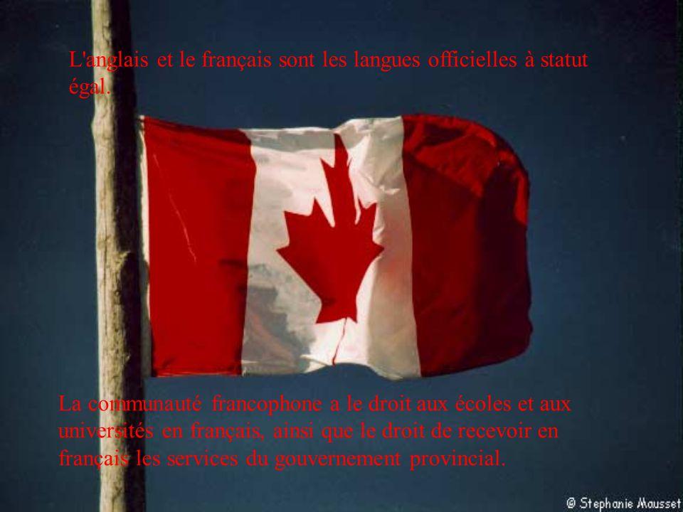 L'anglais et le français sont les langues officielles à statut égal. La communauté francophone a le droit aux écoles et aux universités en français, a