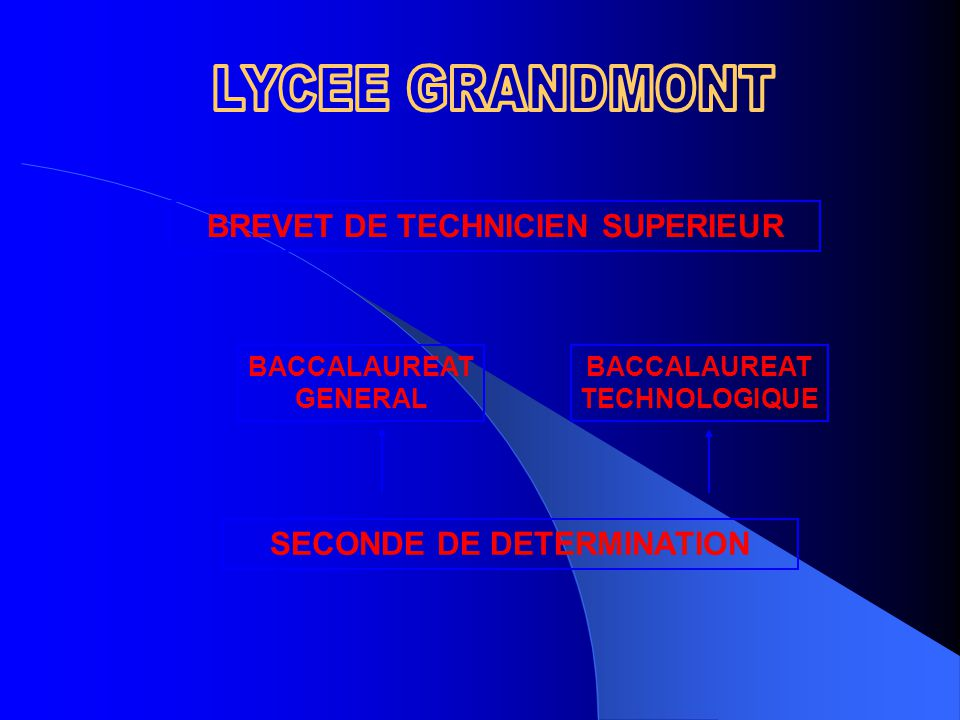 BREVET DE TECHNICIEN SUPERIEUR BACCALAUREAT GENERAL BACCALAUREAT TECHNOLOGIQUE SECONDE DE DETERMINATION