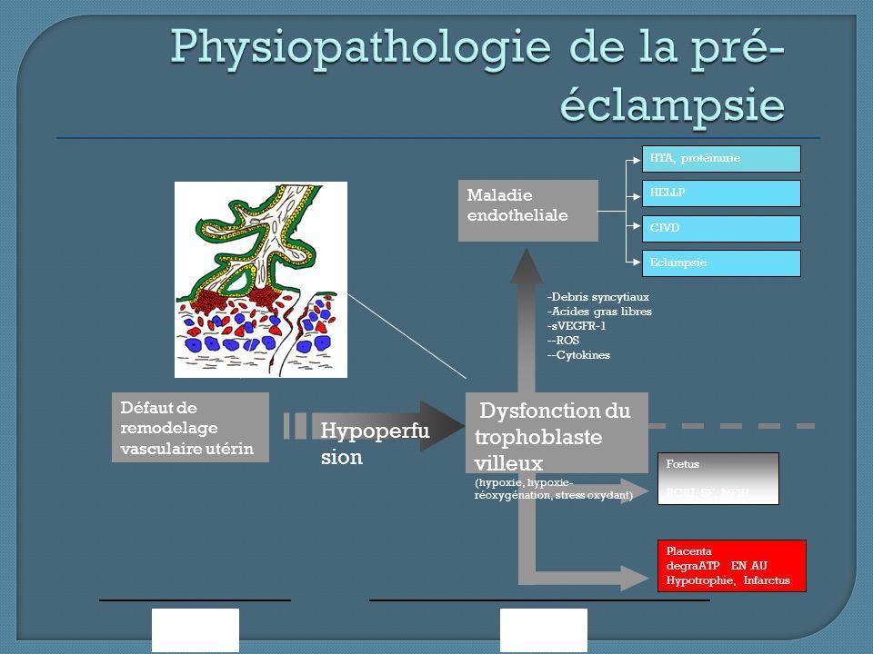 Fœtus RCIU, SF, MFIU Placenta degraATP EN AU Hypotrophie, Infarctus 22 -40 SAAATP Hypoperfu sion Dysfonction du trophoblaste villeux (hypoxie, hypoxie
