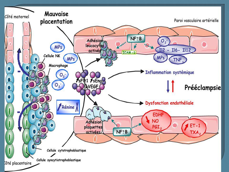  Anémie hémolytique : LDH élevé, bilirubine élevée, schizocytes et chute de l'haptoglobine  Cytolyse hépatique: ASAT et ALAT supérieurs à 3 fois la normale.