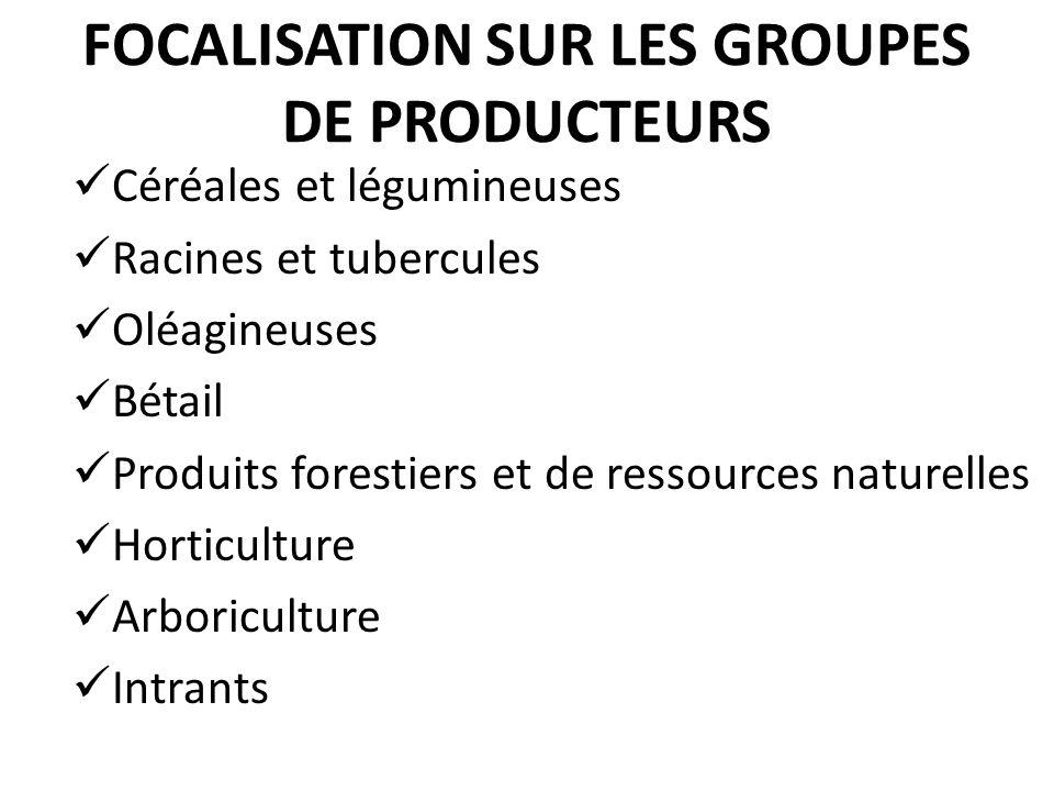 FOCALISATION SUR LES GROUPES DE PRODUCTEURS Céréales et légumineuses Racines et tubercules Oléagineuses Bétail Produits forestiers et de ressources na