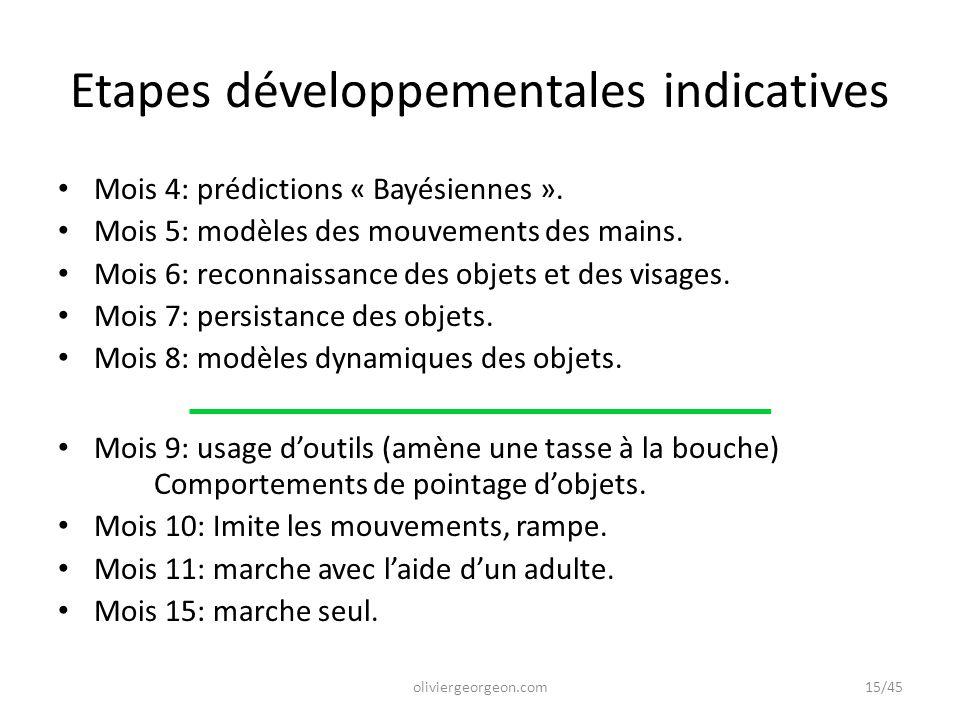 Etapes développementales indicatives Mois 4: prédictions « Bayésiennes ». Mois 5: modèles des mouvements des mains. Mois 6: reconnaissance des objets