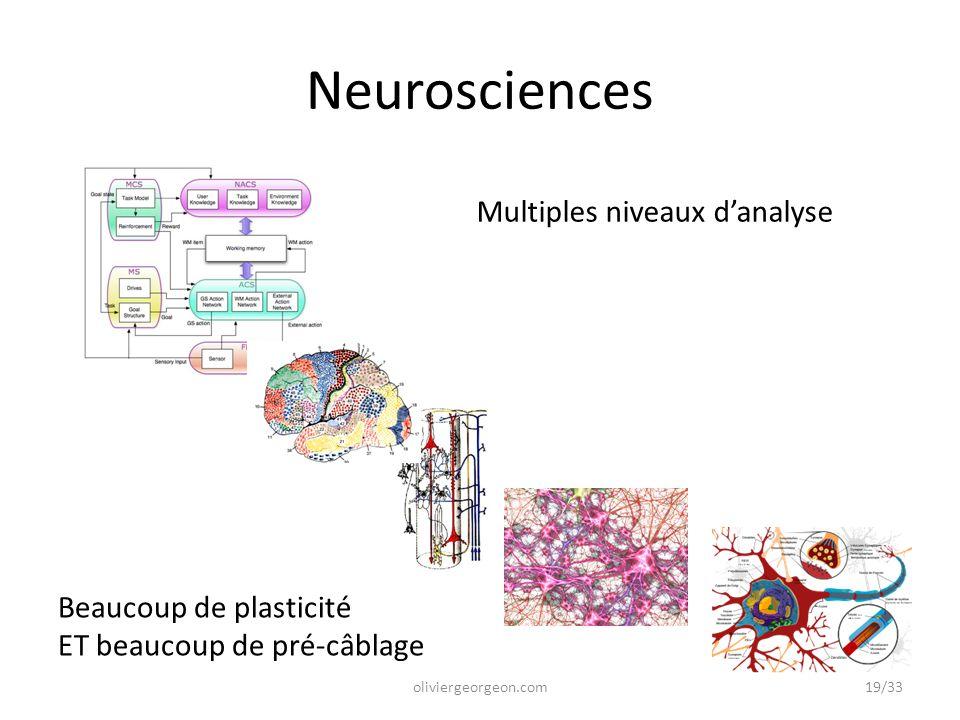 Neurosciences Multiples niveaux d'analyse Beaucoup de plasticité ET beaucoup de pré-câblage 19/33oliviergeorgeon.com