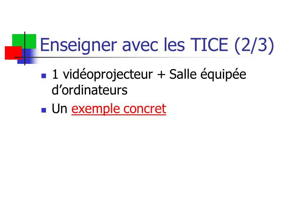 Enseigner avec les TICE (2/3) 1 vidéoprojecteur + Salle équipée d'ordinateurs Un exemple concretexemple concret