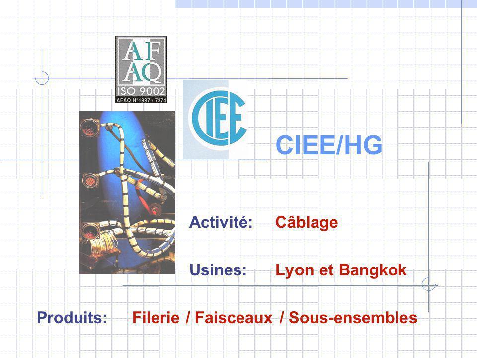 CIEE/HG Activité: Câblage Usines: Lyon et Bangkok Produits: Filerie / Faisceaux / Sous-ensembles