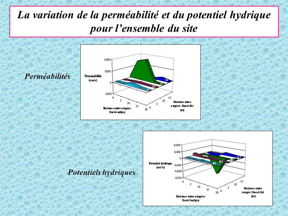 La variation de la perméabilité et du potentiel hydrique pour l'ensemble du site Perméabilités Potentiels hydriques