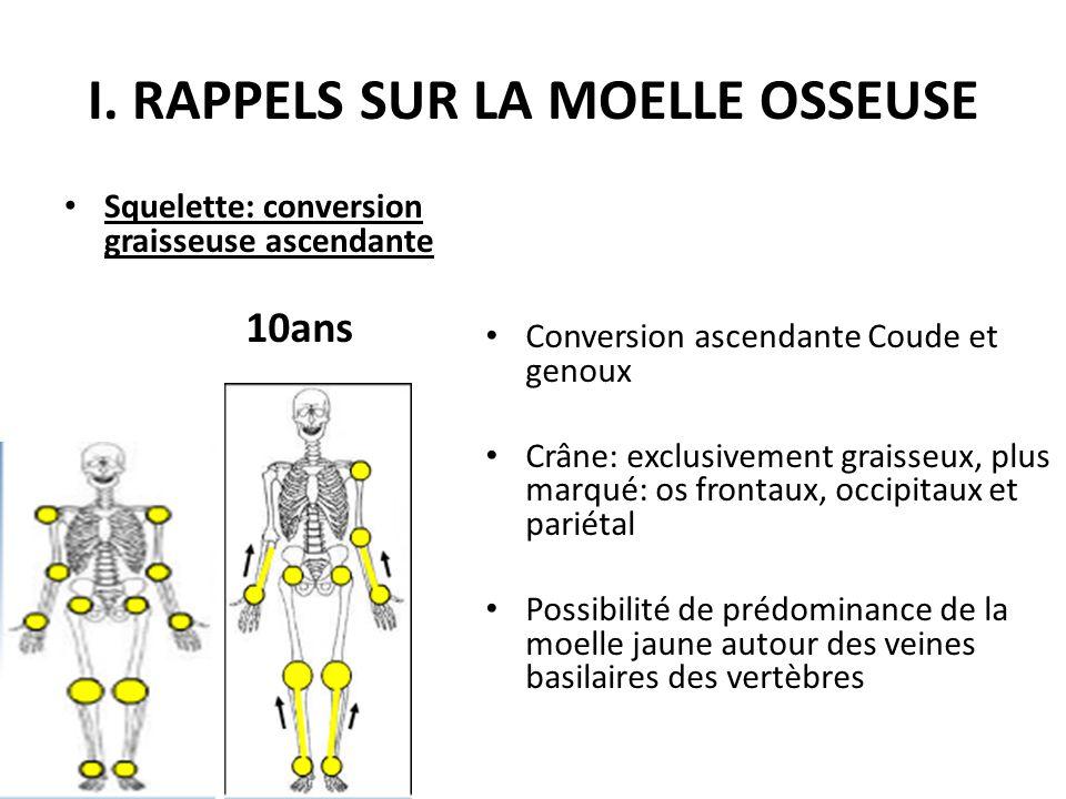 I. RAPPELS SUR LA MOELLE OSSEUSE Squelette: conversion graisseuse ascendante Conversion ascendante Coude et genoux Crâne: exclusivement graisseux, plu