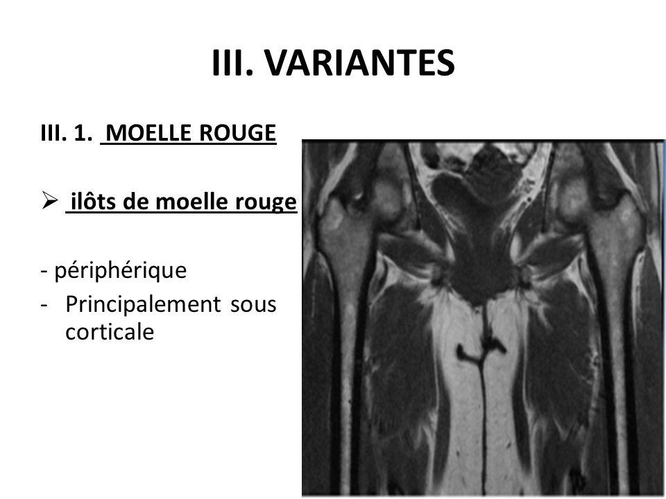 III. 1. MOELLE ROUGE  ilôts de moelle rouge - périphérique -Principalement sous corticale