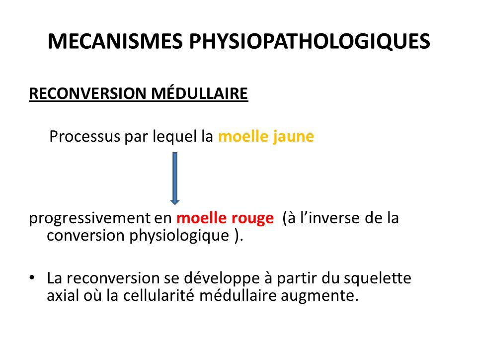 MECANISMES PHYSIOPATHOLOGIQUES RECONVERSION MÉDULLAIRE Processus par lequel la moelle jaune progressivement en moelle rouge (à l'inverse de la convers