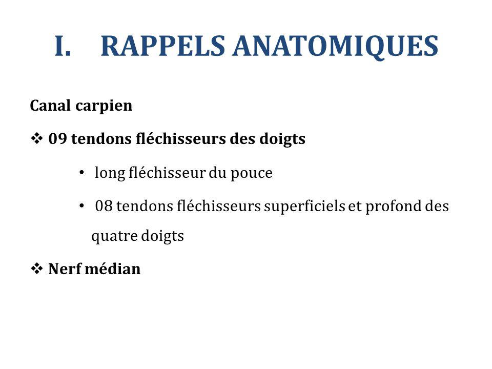 Canal carpien  09 tendons fléchisseurs des doigts long fléchisseur du pouce 08 tendons fléchisseurs superficiels et profond des quatre doigts  Nerf
