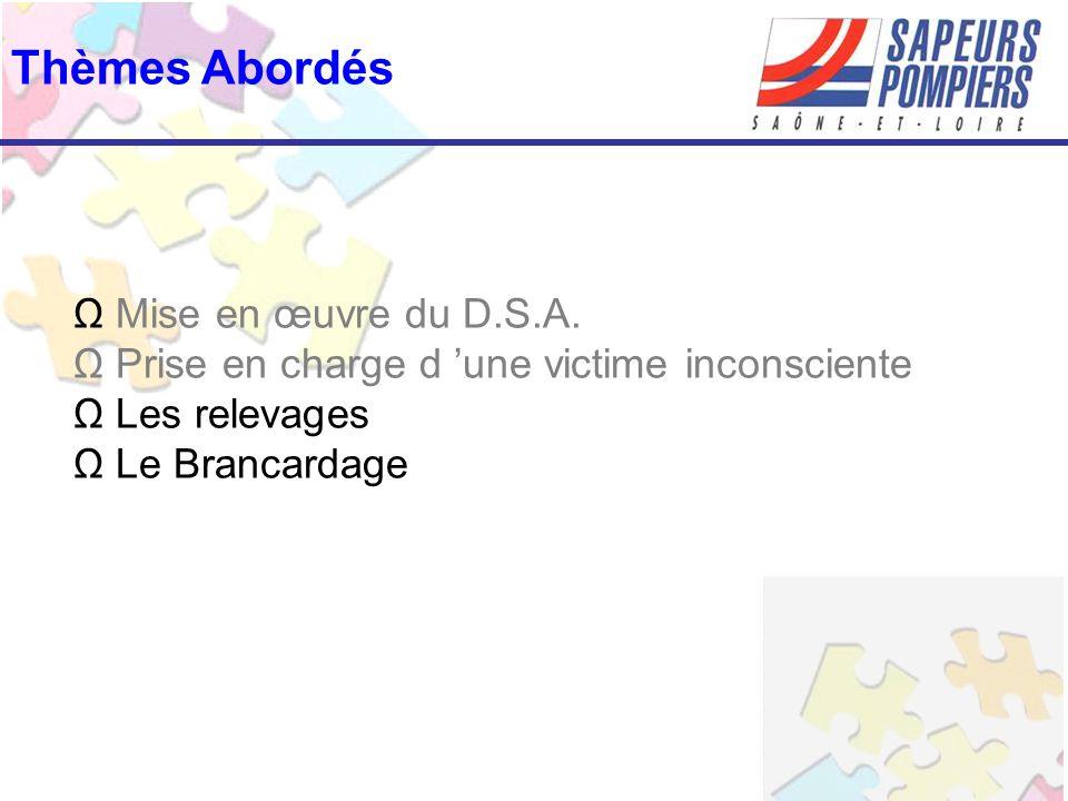 Thèmes Abordés Ω Mise en œuvre du D.S.A. Ω Prise en charge d 'une victime inconsciente Ω Les relevages Ω Le Brancardage