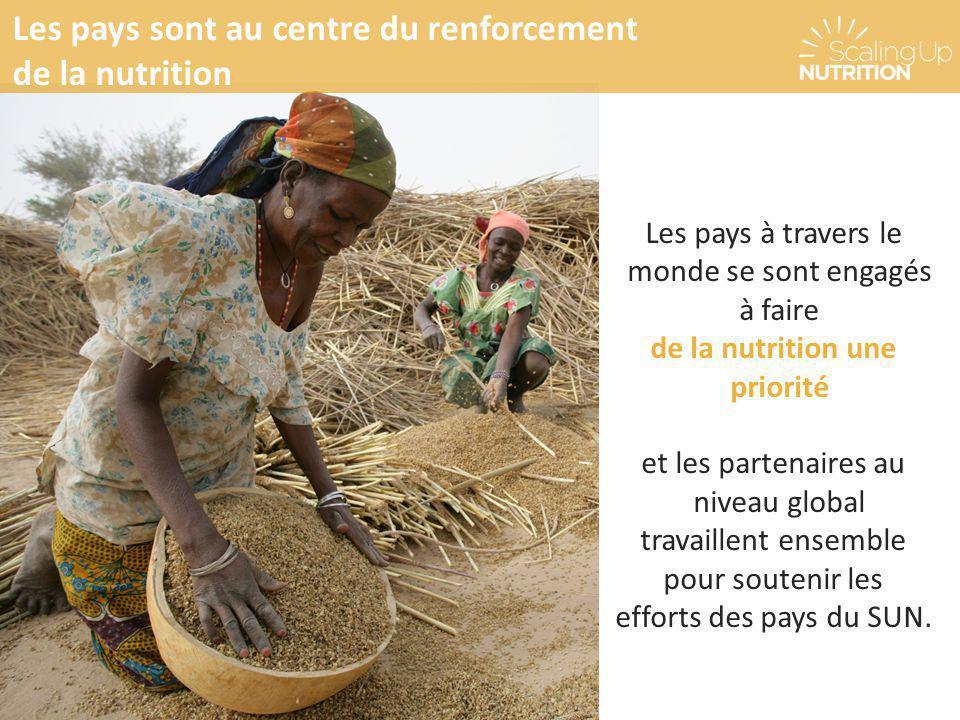 Les pays à travers le monde se sont engagés à faire de la nutrition une priorité et les partenaires au niveau global travaillent ensemble pour souteni