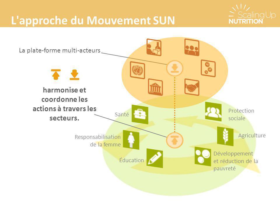 L'approche du Mouvement SUN La plate-forme multi-acteurs harmonise et coordonne les actions à travers les secteurs. Responsabilisation de la femme San