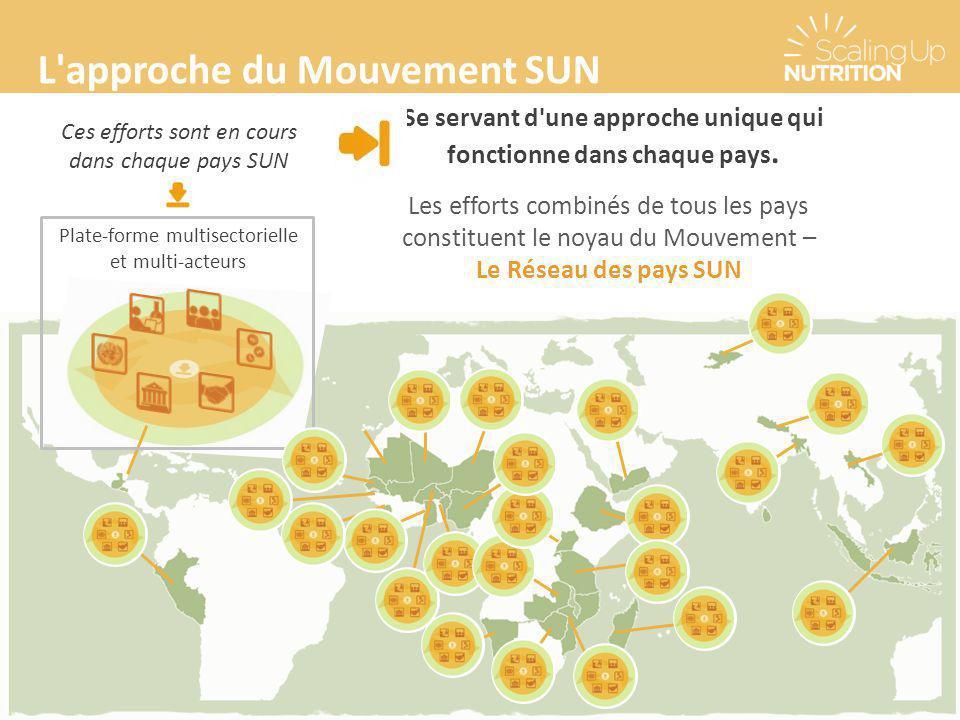 L'approche du Mouvement SUN Se servant d'une approche unique qui fonctionne dans chaque pays. Ces efforts sont en cours dans chaque pays SUN Plate-for